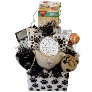 Welcome Puppy Gift Basket