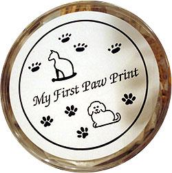 My First Paw Print Kit